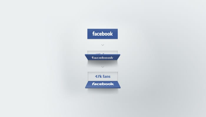 Facebook organic reach by Erik Deiner