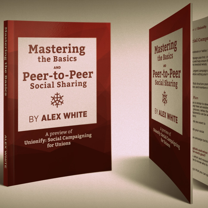 Mastering the Basics and Peer-to-Peer Social Sharing e-book
